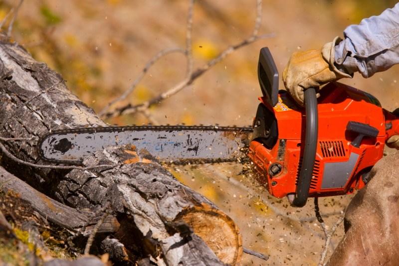 image of red saw cutting log